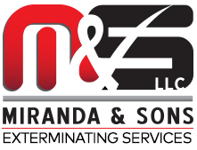 Miranda & Sons, LLC Logo